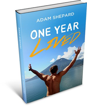 One Year Lived book
