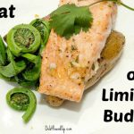 eat healthy limited budget