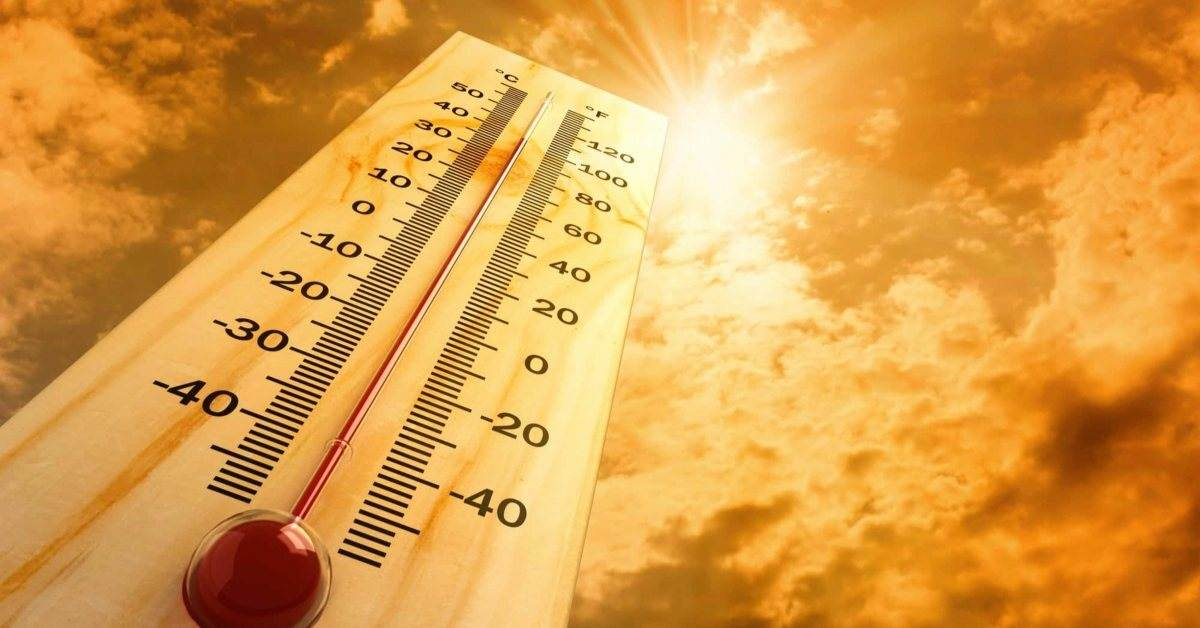 7 ways to cut summer cooling costs