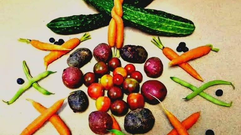 How to Make a Plethora of Healthy Food Affordable